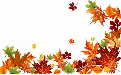 Fall Border Leaves Autumn Background Clip Clipart