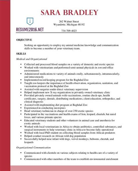 Format Of Resume 2016 by Best Resume Format 2016 Fotolip Rich Image And Wallpaper
