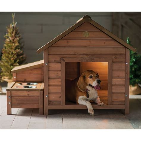 house dogs house wood outdoor home bed puppy shelter pet kennel