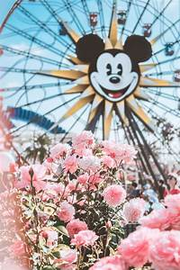 Spring In Disneyland wallpapers (68 Wallpapers ...