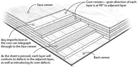 choose   types  plywood popular woodworking