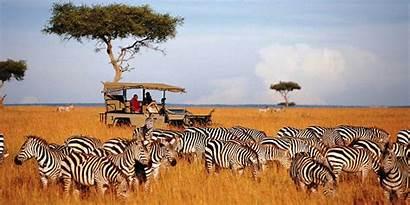 Safari African Landscape Wallpapersafari Amazing Wallpapers
