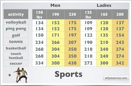 Calories Burned During Exercise
