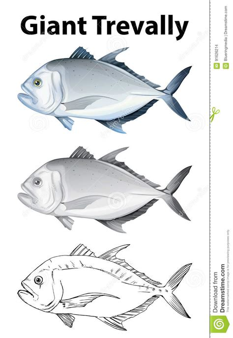 trevally cartoons illustrations vector stock images