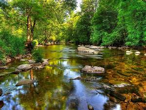 River, Barle, North, Of, Exmoor, River, In, National, Park, England