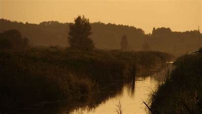 Riverside Evening Sun Reeds River Swamp Mild