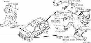 Nissan Xterra Abs Wheel Speed Sensor Wiring Harness  Rear