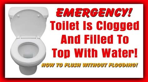 How To Unclog A Toilet Without A Plunger Or Snake Fast
