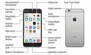 Parts Of The Iphone