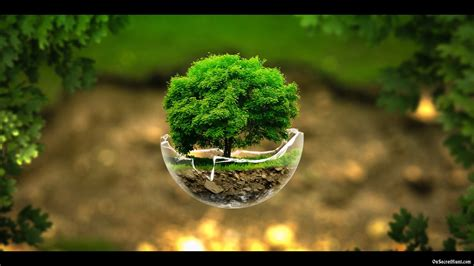 Beautiful Pictures Of Nature Wallpaper by Nature Wallpapers Nature Wallpaper Beautiful