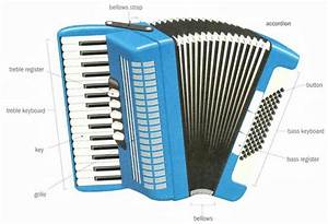 Musical Instruments  U2013 Dictionary For Kids