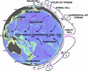 The Large Scale Zonal And Meridian Circulation Of The