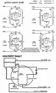 Ceiling  Wiring Diagram Hampton Bay Popular     Wiring