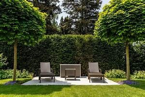 Schnell Wachsende Laubbäume Für Den Garten : schnell wachsende b ume gartentipps von meister meister ~ Michelbontemps.com Haus und Dekorationen