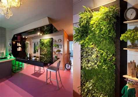 jardines verticales  interiores macrobonsai olivos