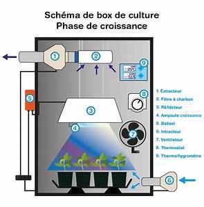 Box de culture Indoor Discount