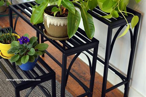 sturdy metal plant stand holds  plants