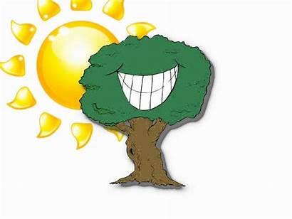 Photosynthesis Animation Clipart Sun Fun Don Clip