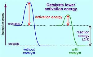 How Do Limiting Reagents And Catalysts Affect The Rate Of