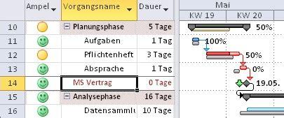 projektmanagement mit ms project   und