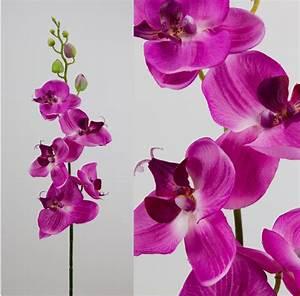 Orchidee Blüht Nicht Mehr : orchideenzweig 90cm fuchsia ad kunstblumen k nstliche ~ Lizthompson.info Haus und Dekorationen