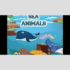 Learn Sea Aniamls Water Animals Nameocean Animal For Kidskids Vocabulary Youtube