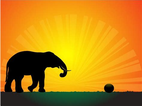 Car Wallpapers Free Psd Files Silhouette by Silhouette Elephant In Sunset Wallpaper Vector Free