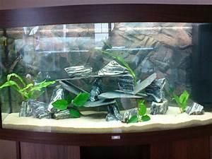 Aquarium Einrichten Anfänger : aquarium dekoration beispiele m belideen ~ Lizthompson.info Haus und Dekorationen