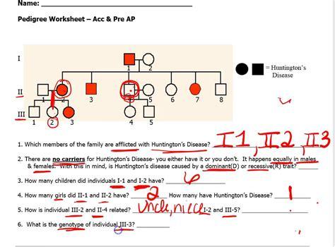genetics pedigree worksheet afterschool team activity