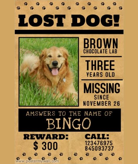10+ Missinglost Pet Poster Templates  Word, Excel & Pdf. Graduate Student Health Insurance. Unique Resume Template Microsoft Word Download. Valentines Day Sale. Never Ending Card Template. Stanford Graduate Student Housing. Unique Invoice Template For Interior Design Services. Northern Arizona University Graduate Programs. Excel Class Schedule Template