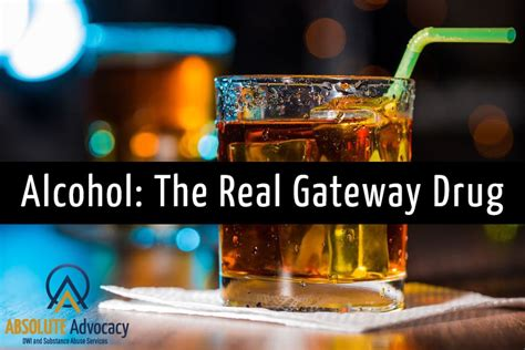 alcohol  real gateway drug absolute advocacy