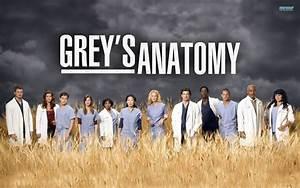 MEGA Post Greys Anatomy Temporadas 1 - 2 - 3 - 4 - Identi