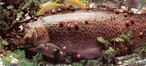 cuisiner la truite cuisiner la truite moulin de bouté orne 02 37 52 82 20