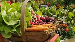 Gemüse Auf Dem Balkon : gem se im garten und auf dem balkon anbauen ~ Lizthompson.info Haus und Dekorationen