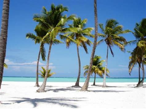 location de canap playa en punta cana fotografía de punta cana la