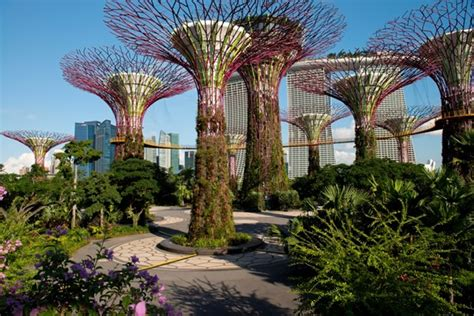 Singapore Vertical Garden by Do Cities Need Vertical Greenery