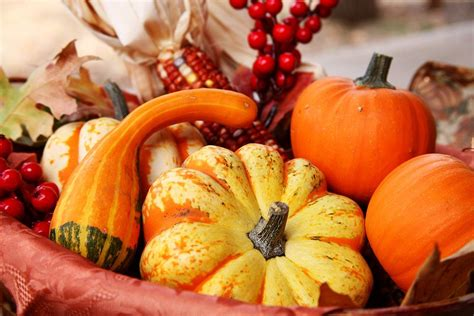 macys thanksgiving day parade    york ny everfest