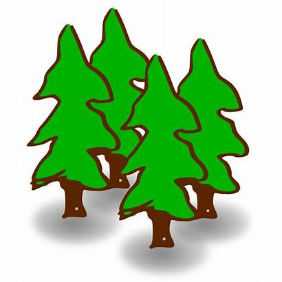 Forest Clipart Pine Cliparts Tree Animals Clip