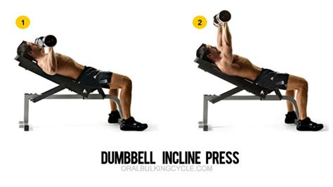 Incline Bench Press Angle by Chest Workouts Top 6 Chest Exercises For Mass Gain