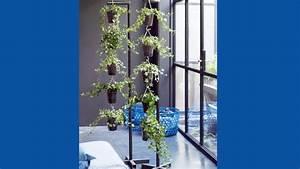 Suspension Plante Interieur : le lierre plante attachante du mois d avril ~ Preciouscoupons.com Idées de Décoration