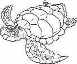 Coloring Ocean Pages Printable Popular sketch template