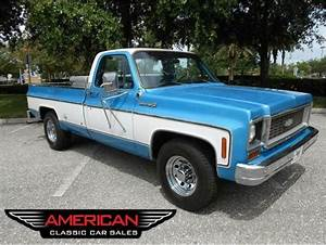 1973 Chevrolet C20 For Sale