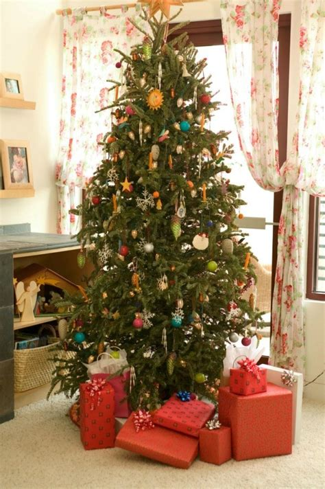 caring for a christmas tree thriftyfun