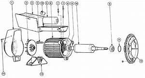 Hs Series Pump Parts