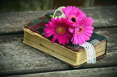 image libre decoration fleur fleur rose livre table