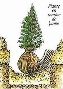 Tuer Un Arbre Avec De L Acide : la plantation d 39 un arbre ou d 39 un arbuste ~ Dailycaller-alerts.com Idées de Décoration