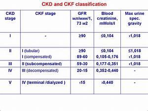 Glomerulonephritis In Children Chronic Kidney Failure