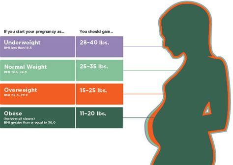 tdee  macro calculations  pregnant  breastfeeding