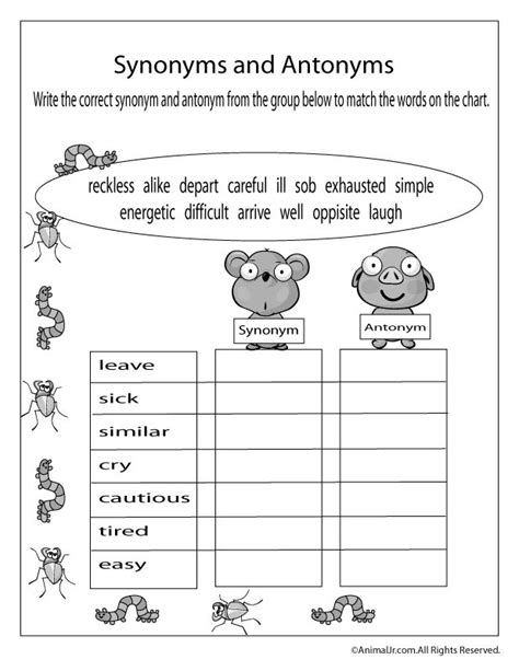 spring worksheets spring antonyms and synonyms worksheet