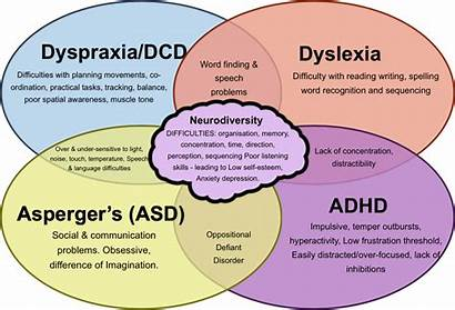 Learning Difficulties Specific
